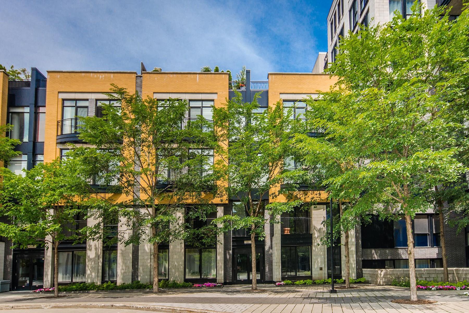 Nhà chung cư vì Bán tại Le Plateau-Mont-Royal (Montréal), Montréal 3419 Av. Henri-Julien, Apt. 101B Montreal, Quebec H2X3H3 Canada