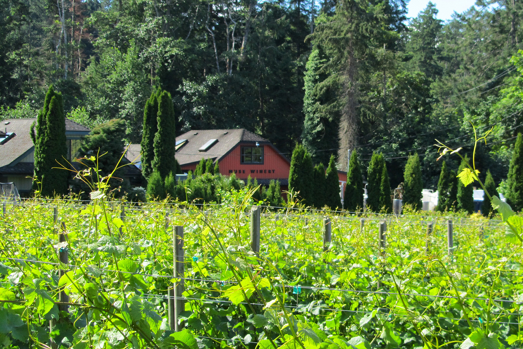 Other Residential for Sale at Muse Winery 11195 Chalet Road North Saanich, British Columbia V8L 5M1 Canada
