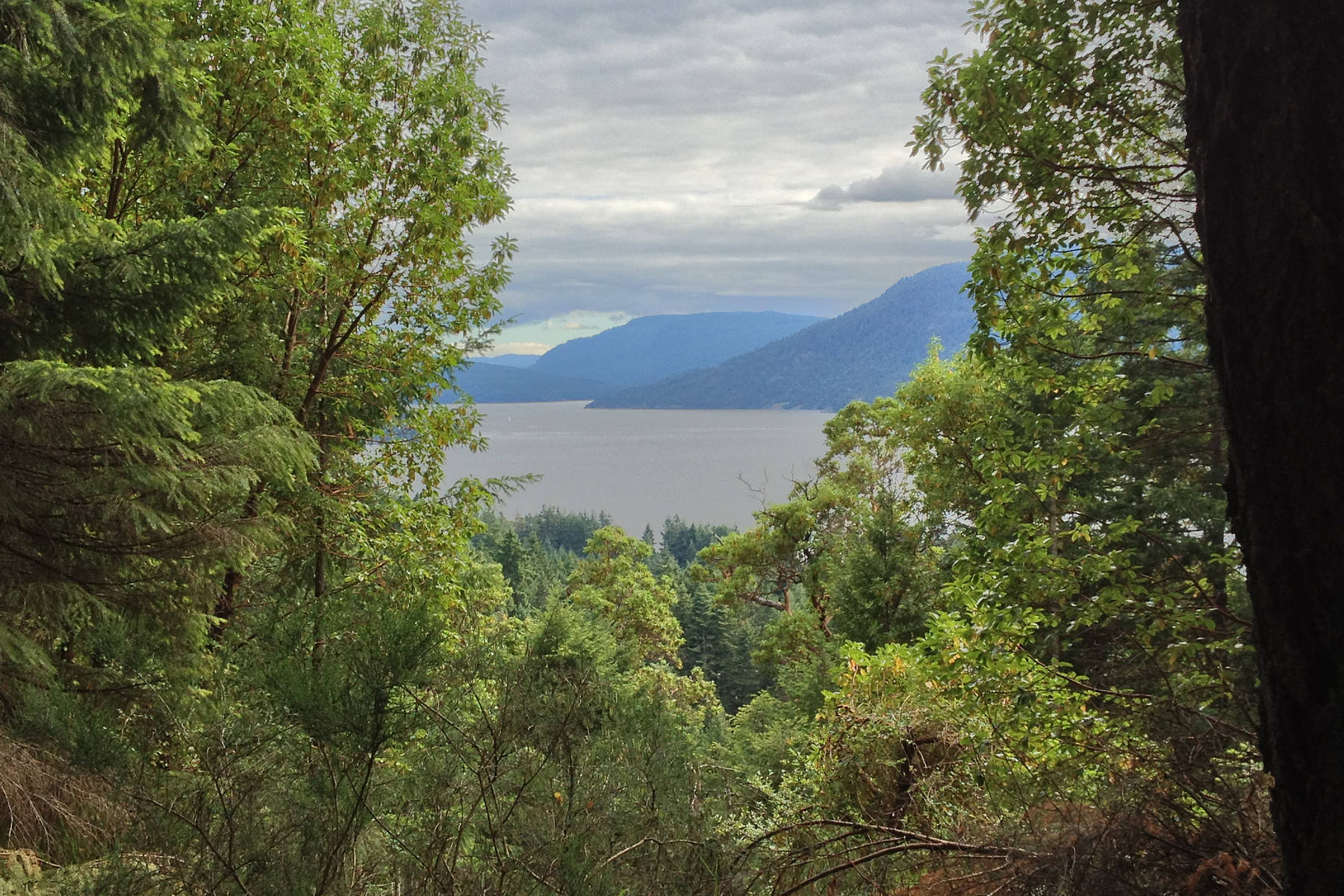 Land for Sale at Oceanview Lot in Channel Ridge Lot 1 Maple Ridge Place Salt Spring Island, British Columbia, V8K 1G7 Canada