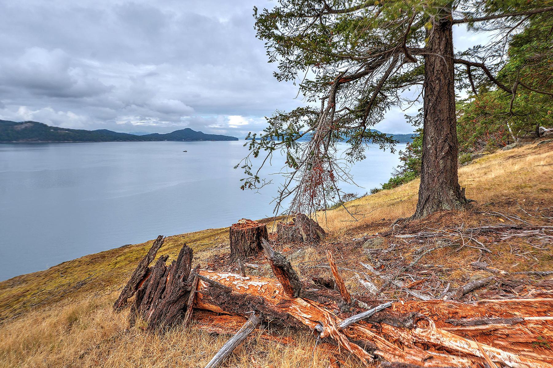 Copropriété pour l Vente à Build your custom home 123 Farrow Road Saturna Island, Colombie-Britannique, V0N 2Y2 Canada