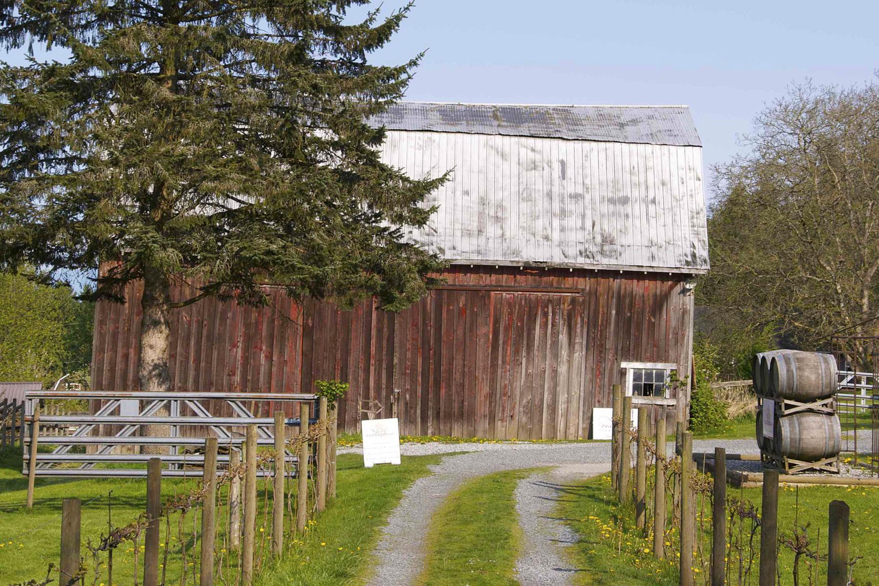 农场 / 牧场 / 种植园 为 销售 在 Vista D'Oro Winery 346 208th Street Langley, 不列颠哥伦比亚省 V2Z 1T7 加拿大