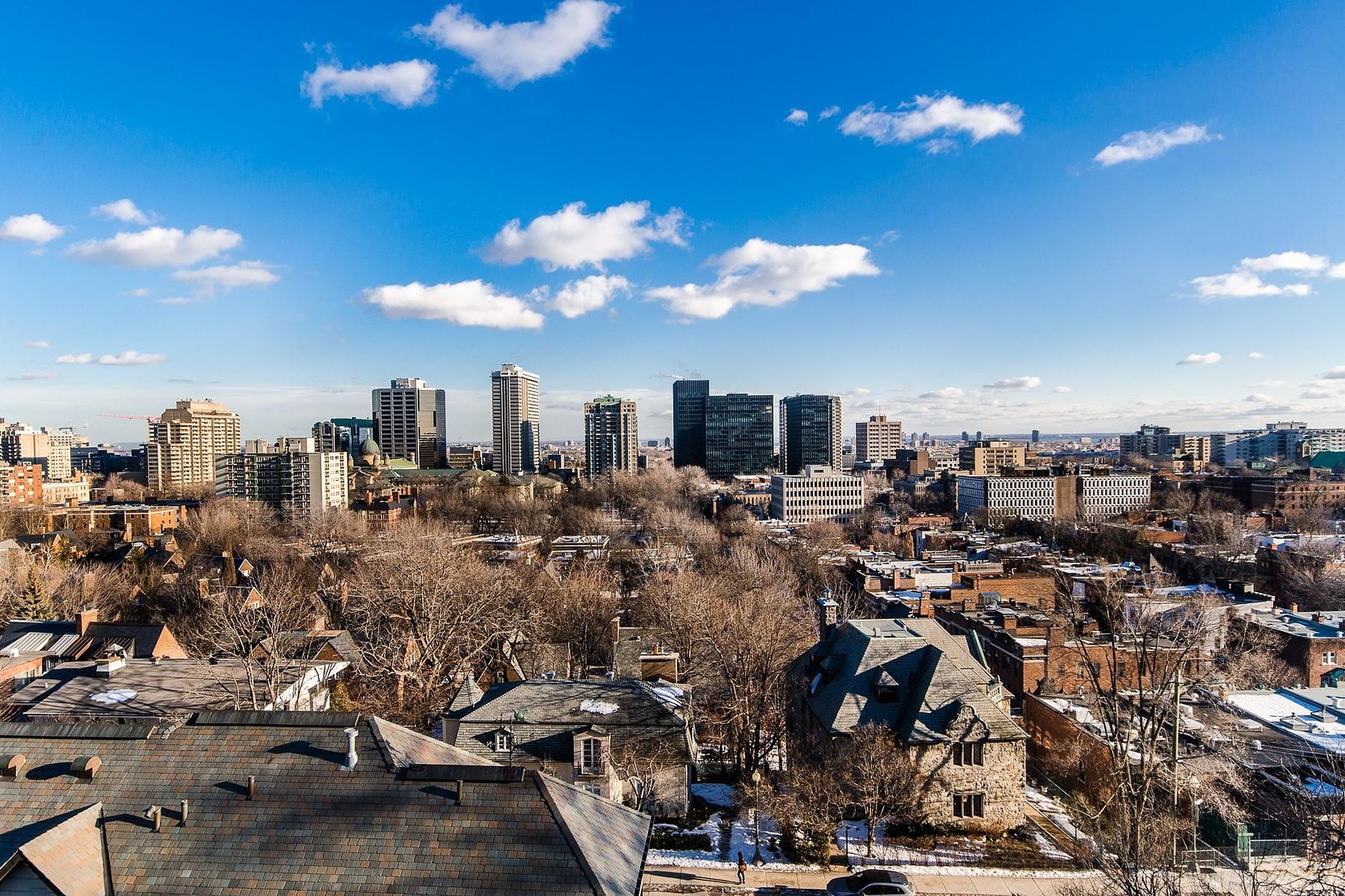 獨棟家庭住宅 為 出售 在 Westmount, Montréal 52 Ch. de Lavigne Westmount, 魁北克省 H3Y2K2 加拿大