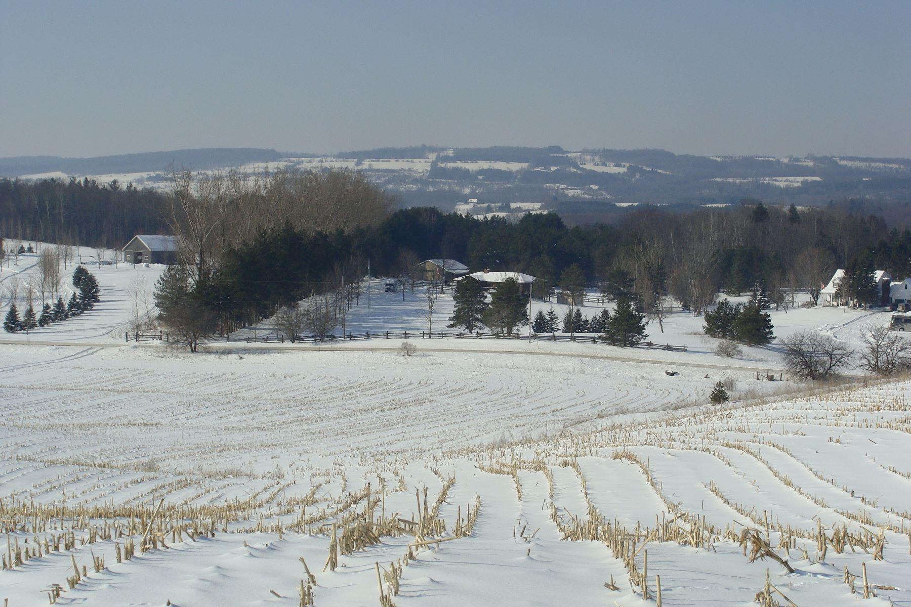Terreno para Venda às 45 Acres with Gorgeous Views Lt 29 7 Line E, Mulmur, Ontario, L9V 0M9 Canadá