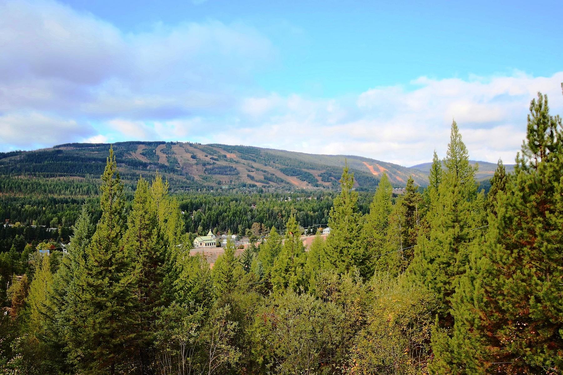 Casa Unifamiliar por un Venta en Lifestyle, Privacy and Revenue 1302 Mill Road, Kimberley, British Columbia, V1A 3K9 Canadá