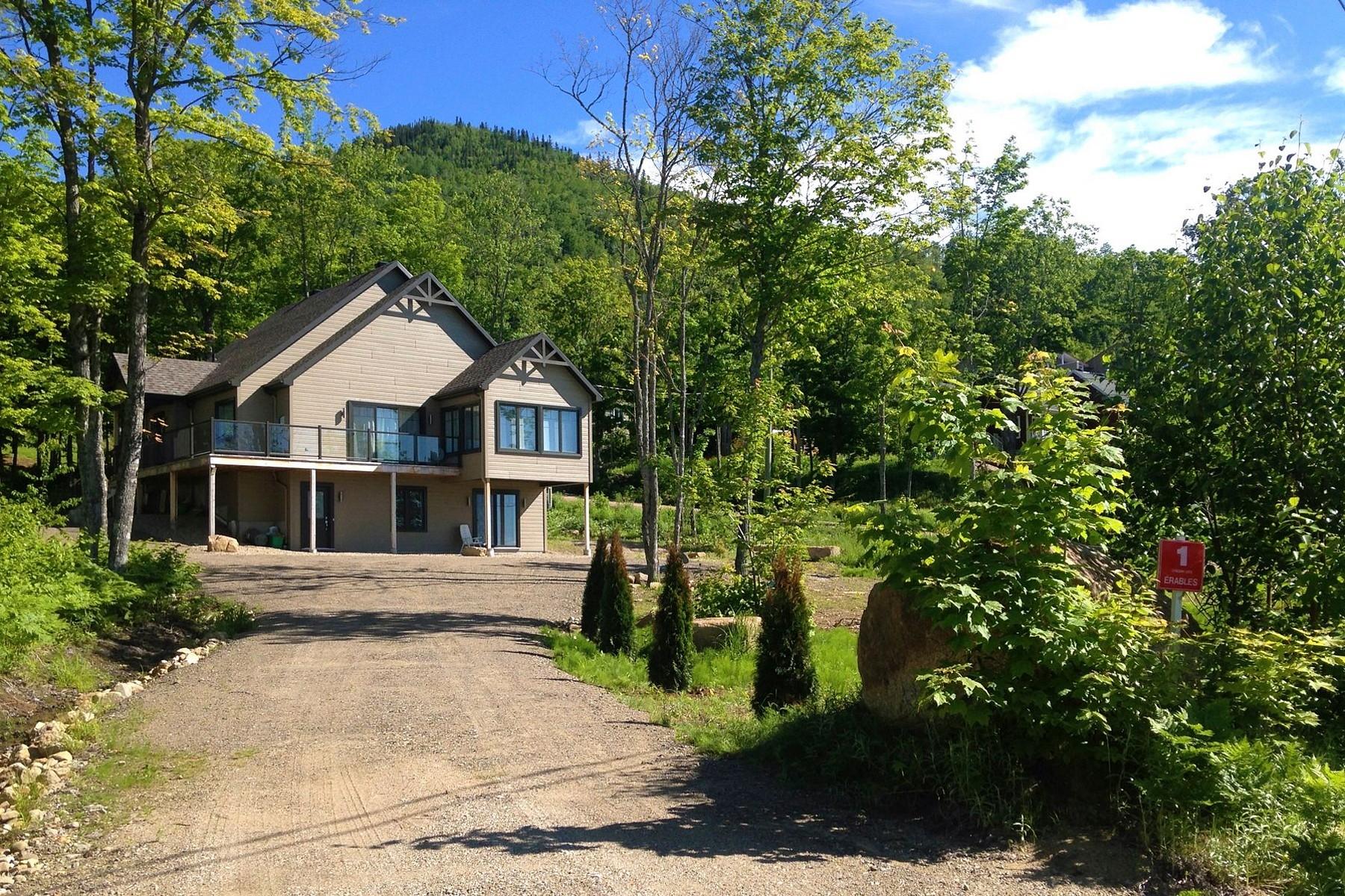 Casa Unifamiliar por un Venta en Petite-Rivière-Saint-François, Capitale-Nationale 1 Ch. des Érables, Petite-Riviere-Saint-Francois, Quebec, G0A2L0 Canadá
