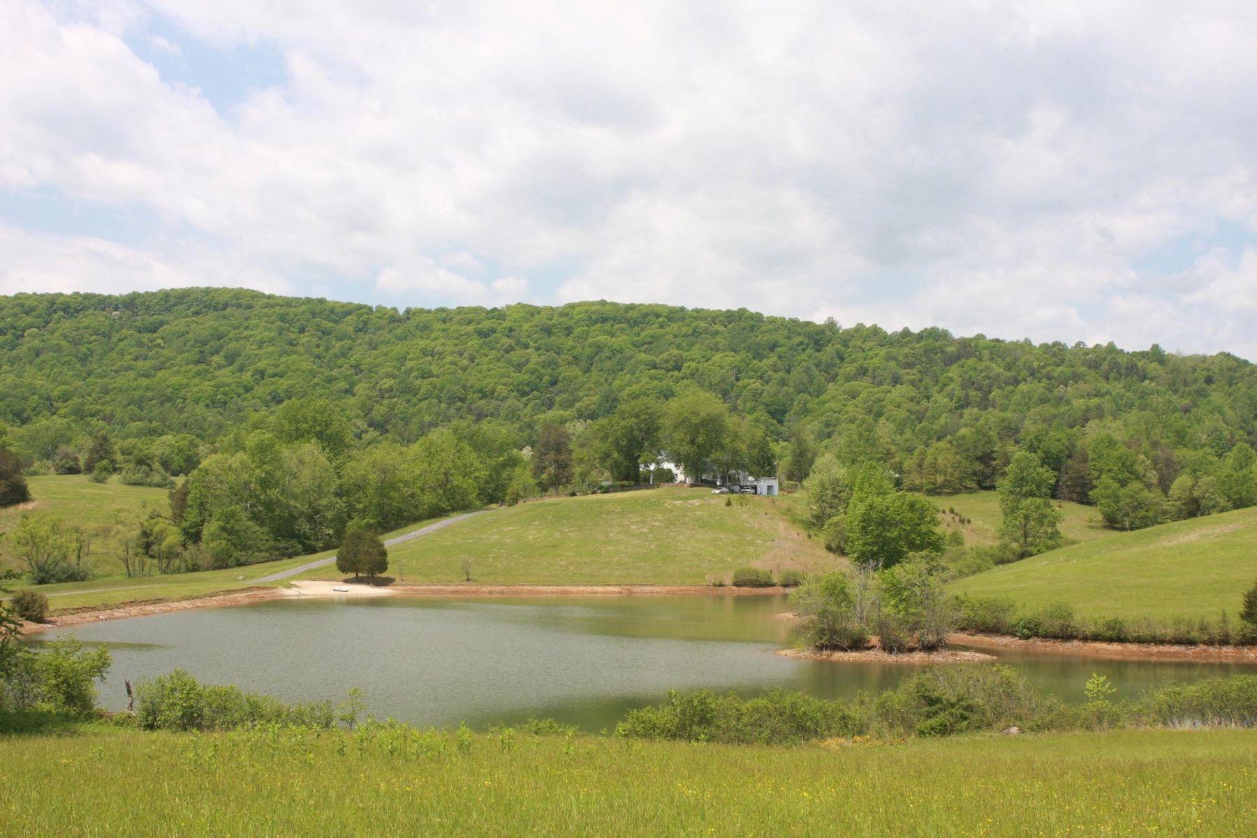 土地 為 出售 在 Castleton, 弗吉尼亞州 22716 美國