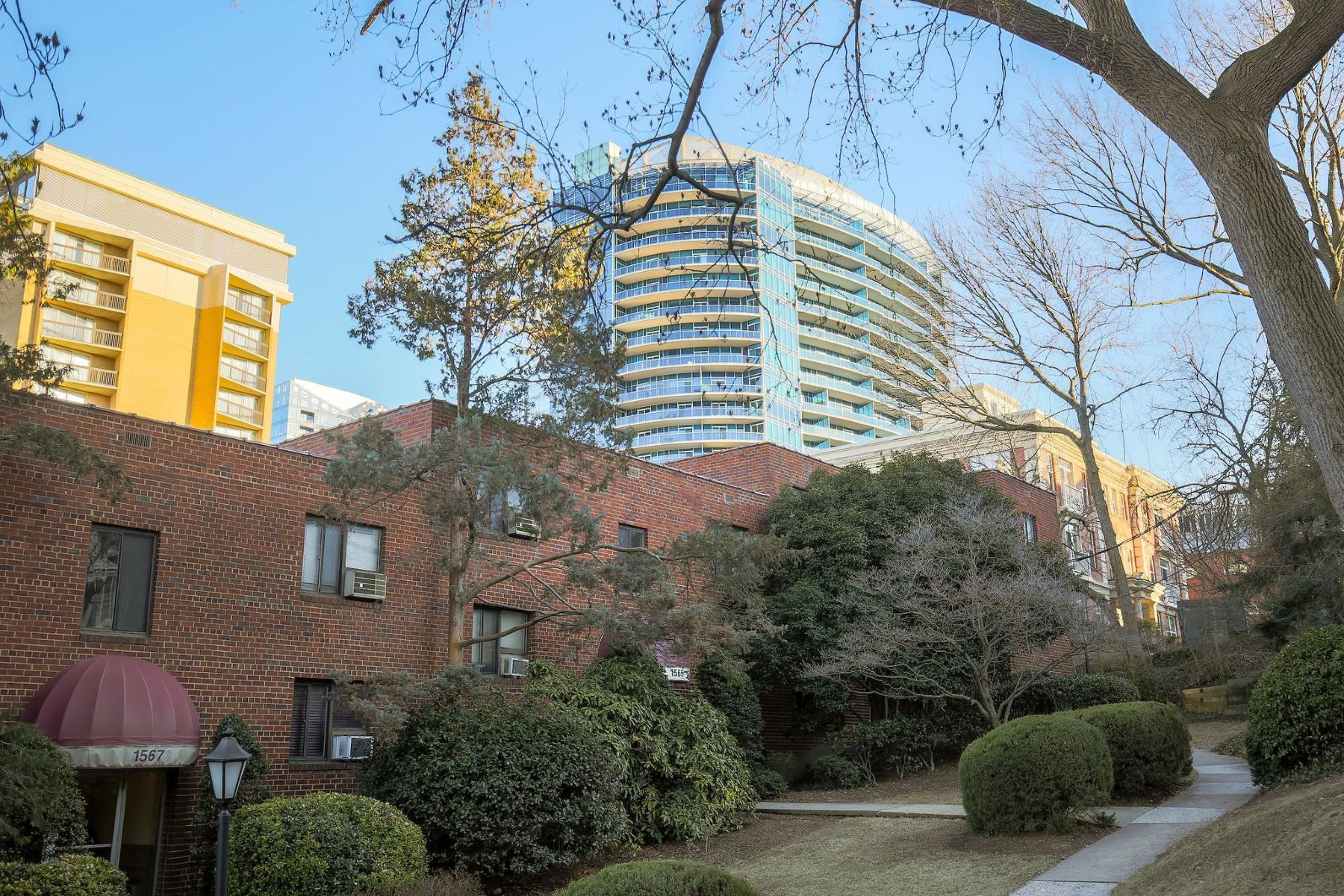 Condominium for Rent at 1569 Colonial Ter #207-Z 1569 Colonial Ter #207-Z Arlington, Virginia 22209 United States