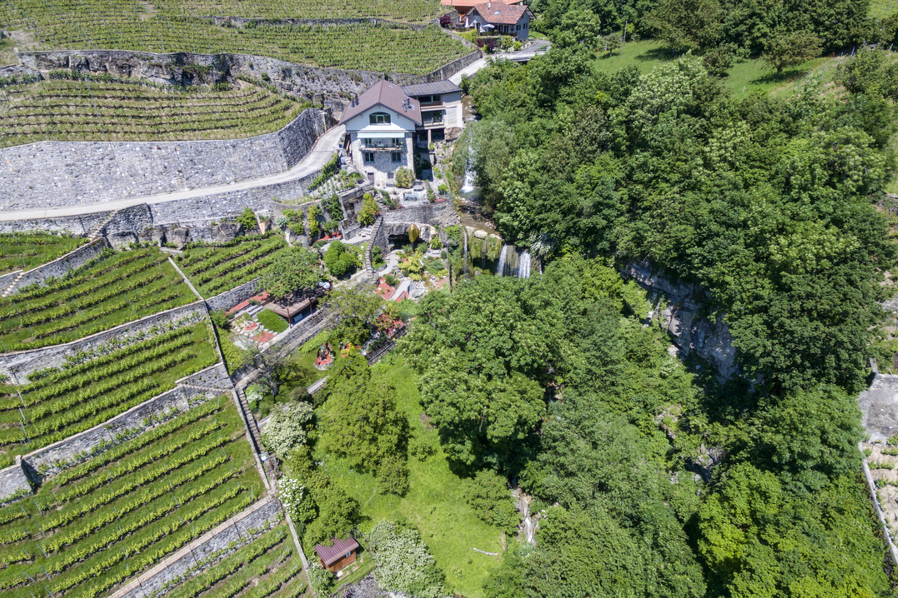 sales property at Rare property in the heart of Lavaux Spectacular lake view