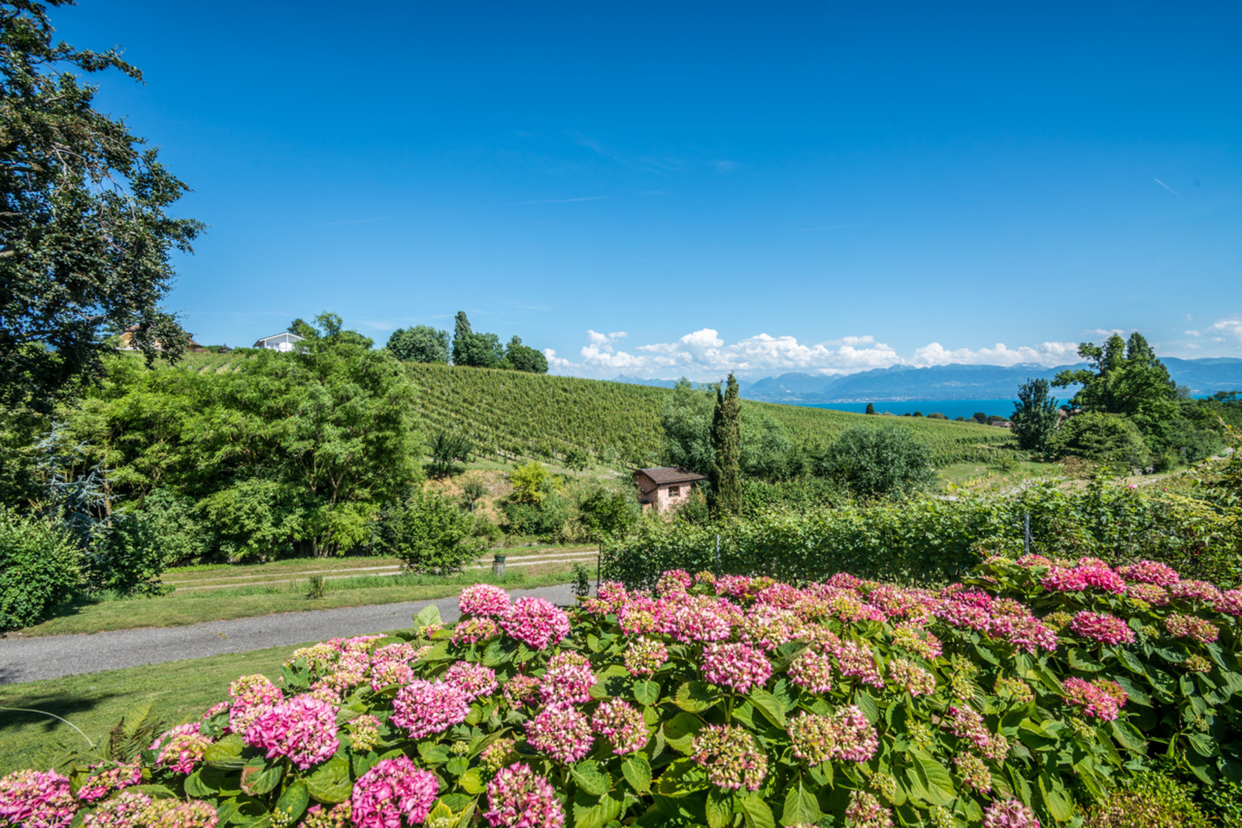 sales property at An estate filled with character set amid the vineyards