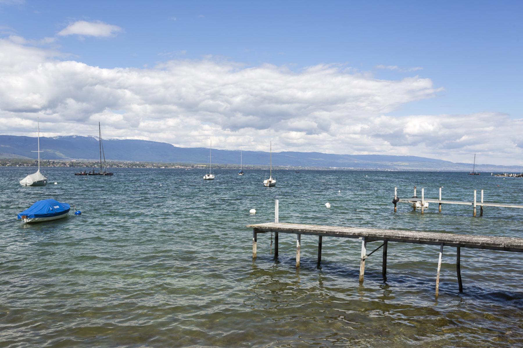 Частный односемейный дом для того Продажа на Beautiful property by the lake with private jetty Corsier Other Switzerland, Другие Регионы В Швейцарии, 1246 Швейцария