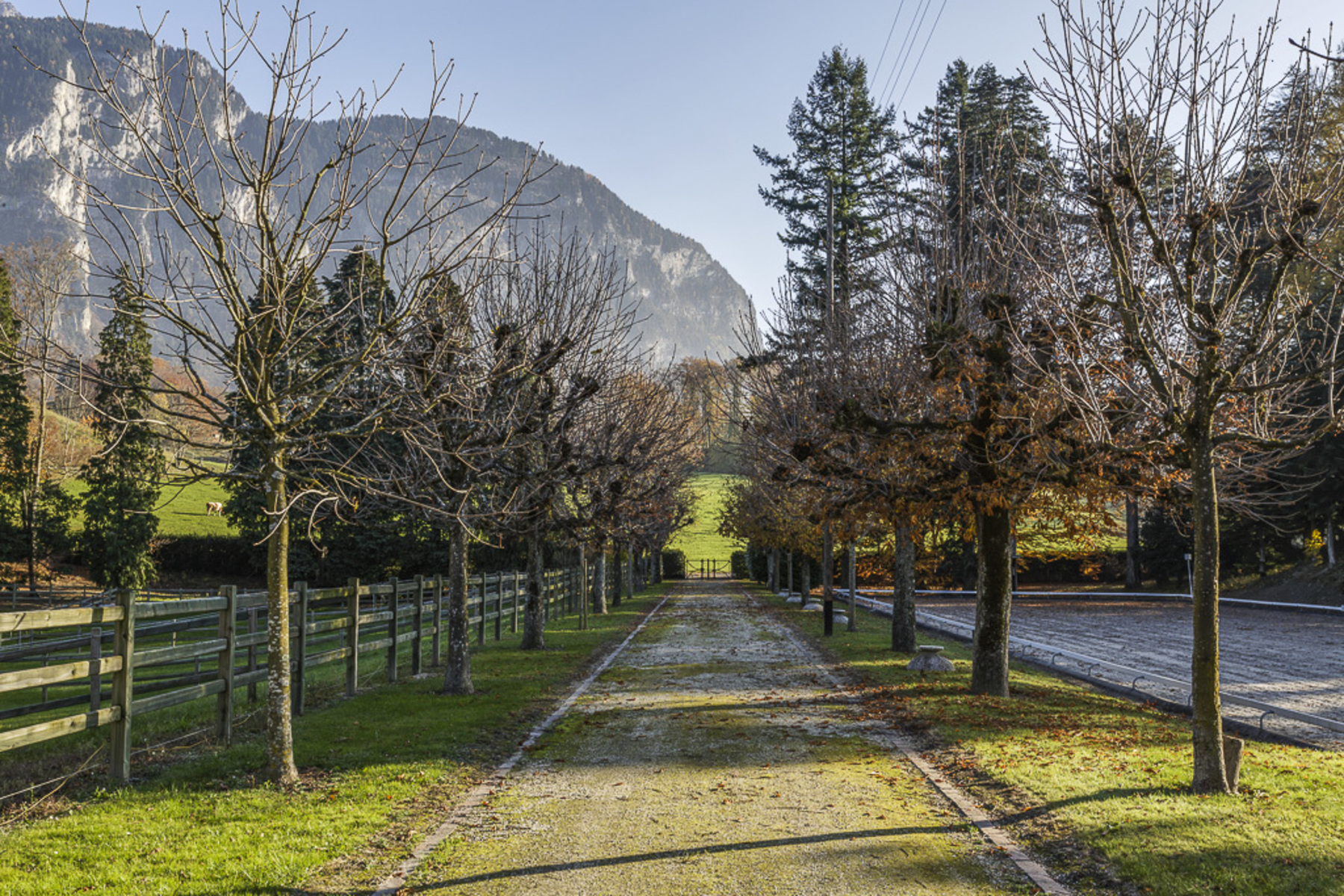 sales property at 500 m2 manor with equestrian centre Five-hectare grounds
