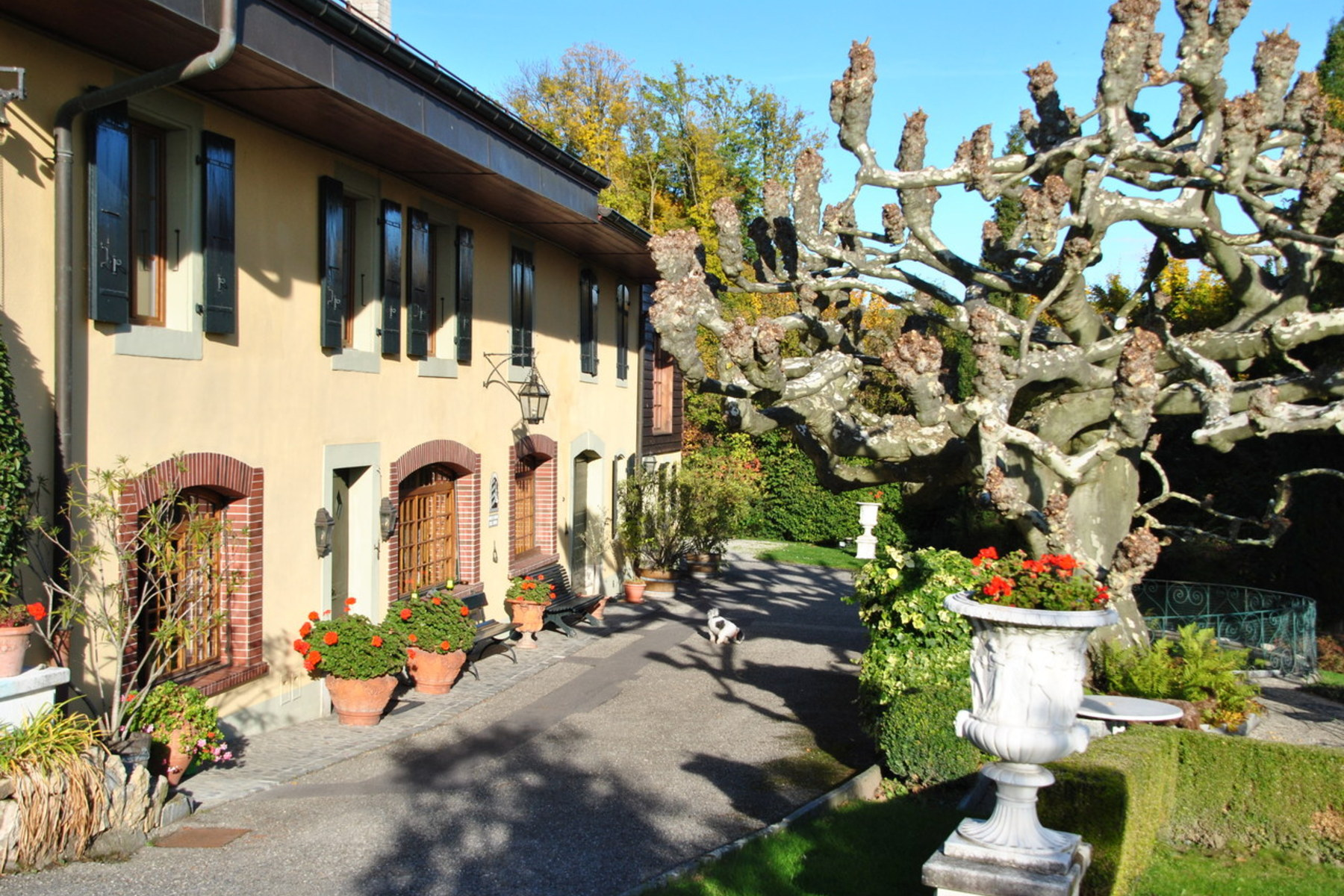 Property For Sale at An estate filled with character set amid the vineyards