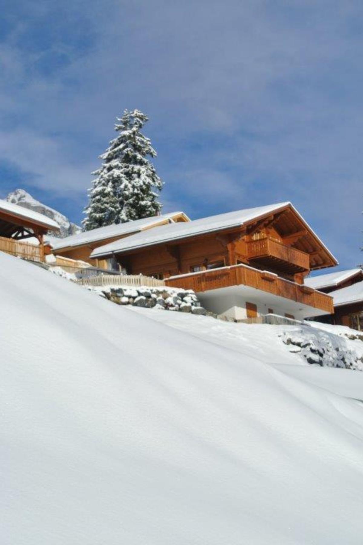 Частный односемейный дом для того Продажа на Chalet Alina Route d'Essert d'Amont 12 Leysin, Во, 1854 Швейцария