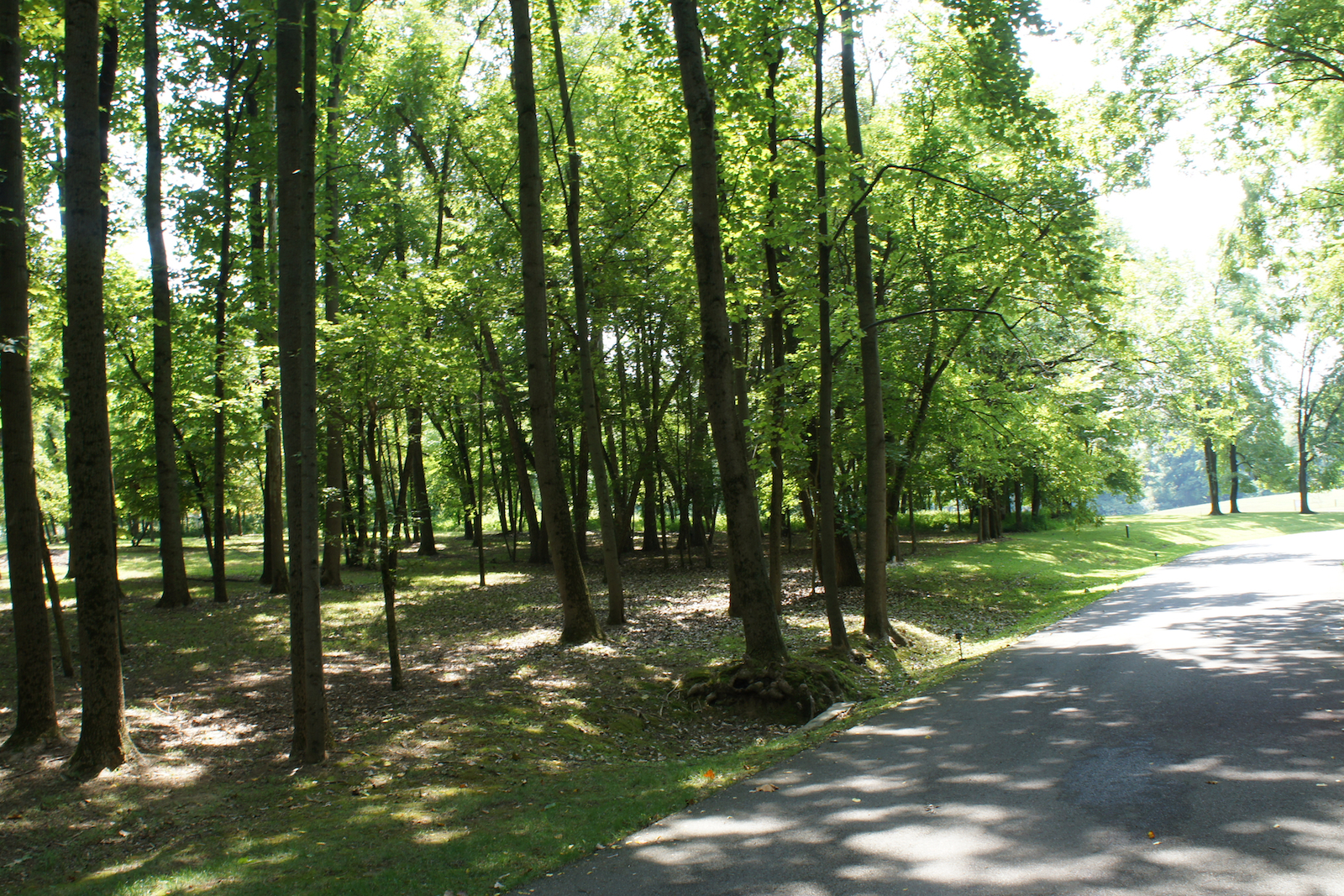 Additional photo for property listing at 14459 River Glades Drive  Prospect, Kentucky 40059 United States