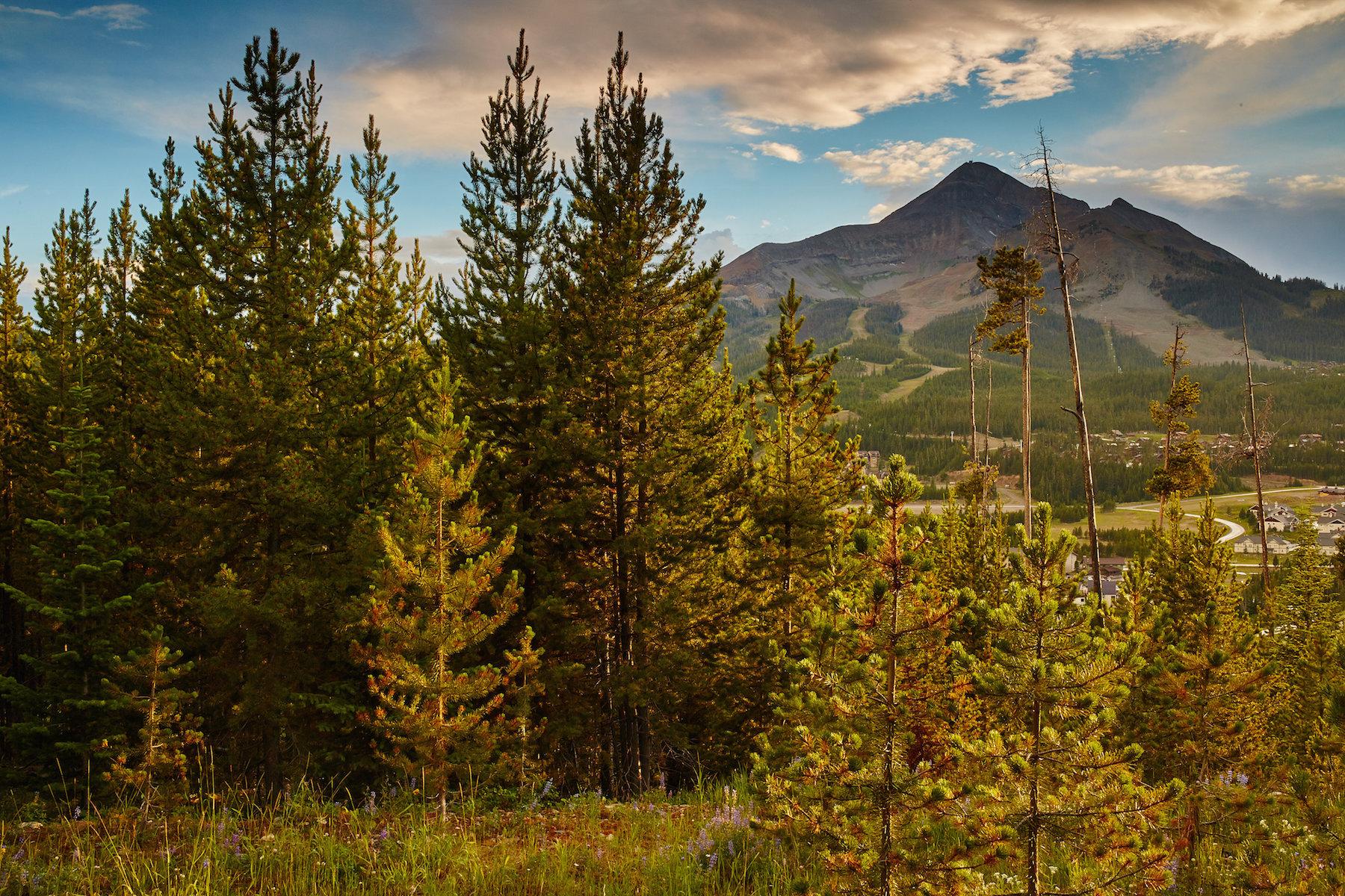 Terreno per Vendita alle ore Summit View Homesite Summit View Drive, Ph 1, Lot 3 Big Sky, Montana, 59716 Stati Uniti