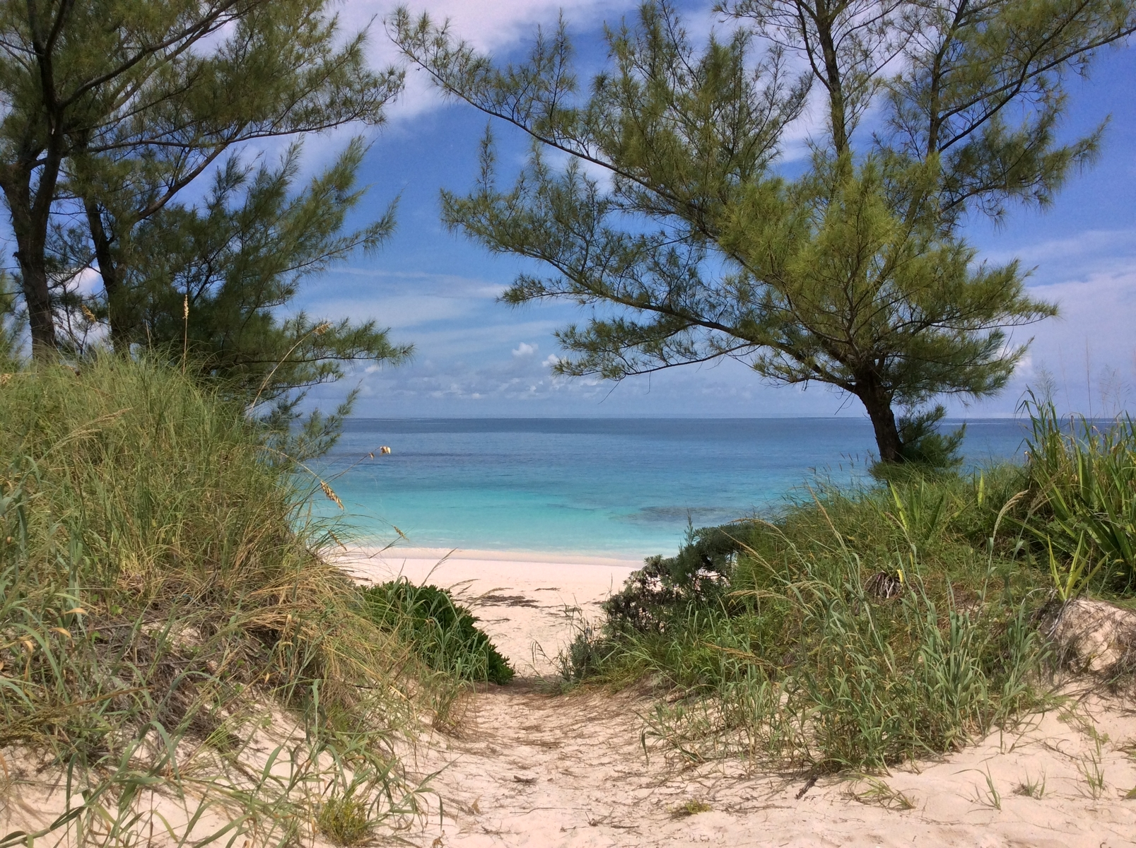 Additional photo for property listing at Susan's Cove #7 Guana Cay, Abaco Bahamas