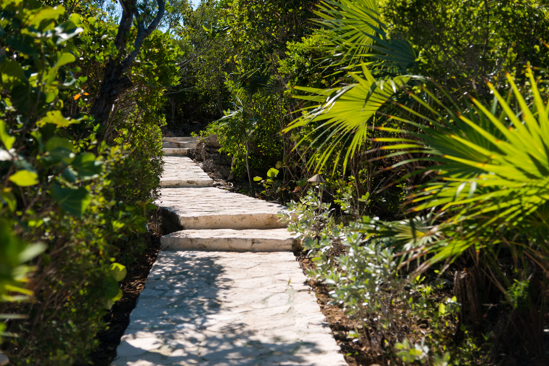 Additional photo for property listing at Villa Alizee Beachfront Chalk Sound, Providenciales TCI BWI Islas Turcas Y Caicos
