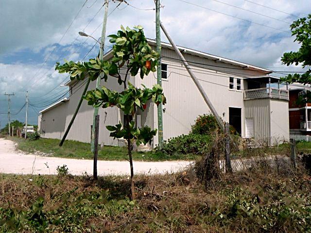 Additional photo for property listing at Warehouse/Retail & Loft Apartments San Pedro, Belize Belize