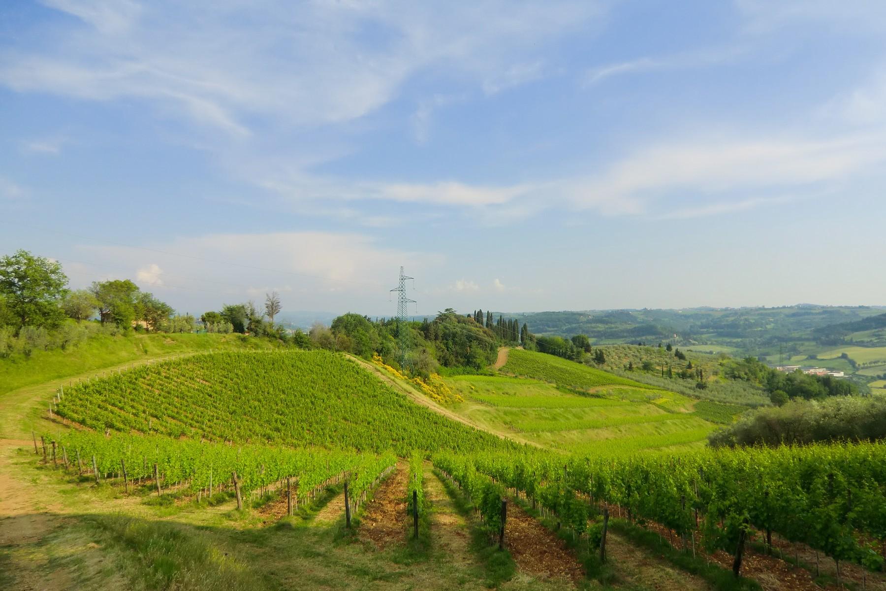 Ferme / Ranch / Plantation pour l Vente à Tuscan farm in Chianti region San Casciano in Val di Pesa San Casciano In Val Di Pesa, Florence 50026 Italie