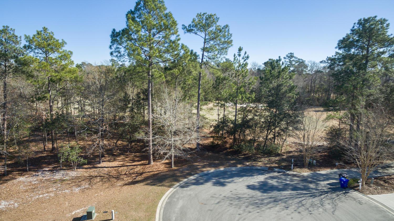 Terrain pour l à vendre à Exceptional Value Golf Course Lot 496 Deep Water Drive SE, Bolivia, Carolina Du Nord, 28422 États-Unis