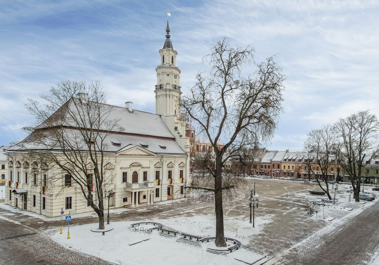 Fractional Ownership Properties for Sale at UNIQUE APARTMENTS IN TOWN HALL SQUARE Kaunas, Kaunas County Lithuania