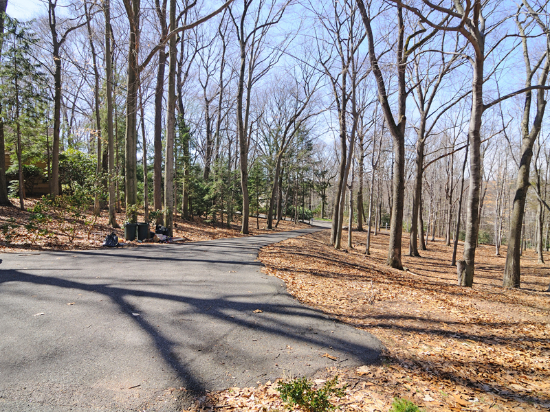 Land for Sale at A Builders Dream 11 Dogwood Rd Saddle River, New Jersey 07458 United States