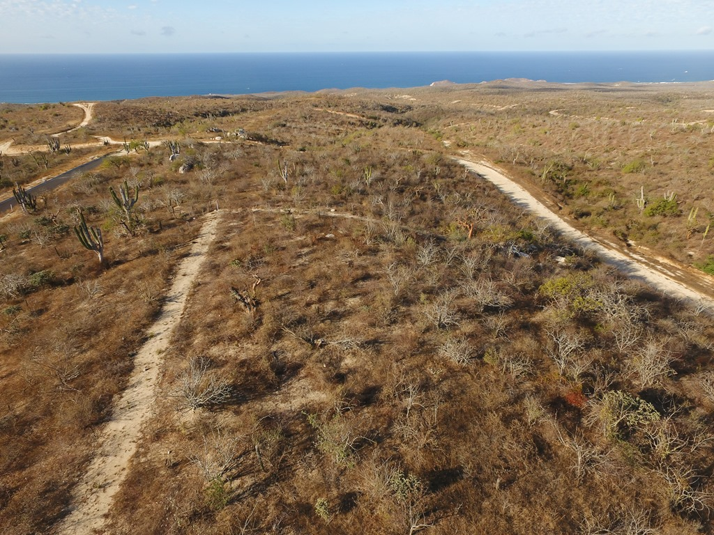 Additional photo for property listing at Rolling Hills Lot 1 Cabo San Lucas, Baja California Sur México