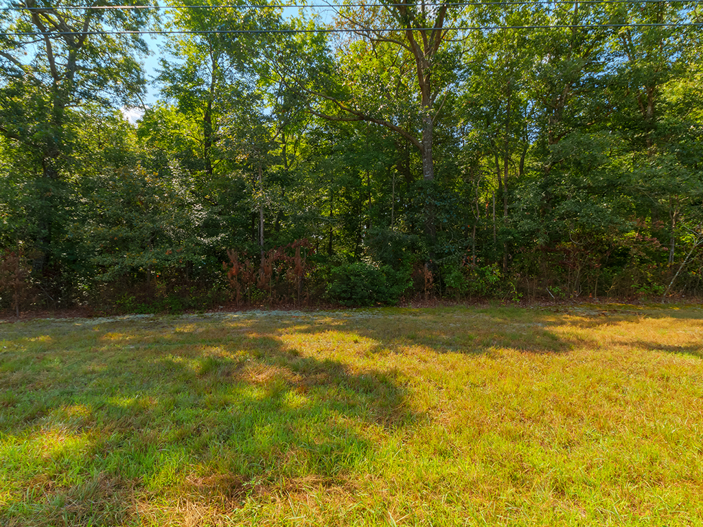 Land for Sale at 29002 Harmons Hill Rd , Millsboro, DE 19966 29002 Harmons Hill Rd, Millsboro, Delaware 19966 United States