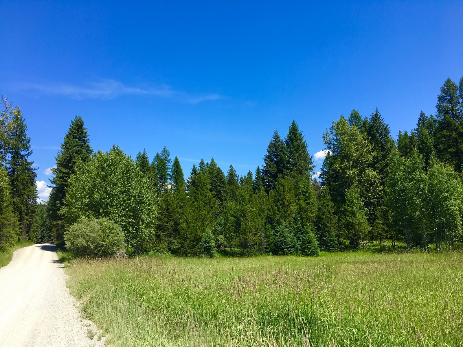 Land for Sale at 146 Lupfer Meadows Pl , Whitefish, MT 59937 146 Lupfer Meadows Pl Whitefish, Montana 59937 United States