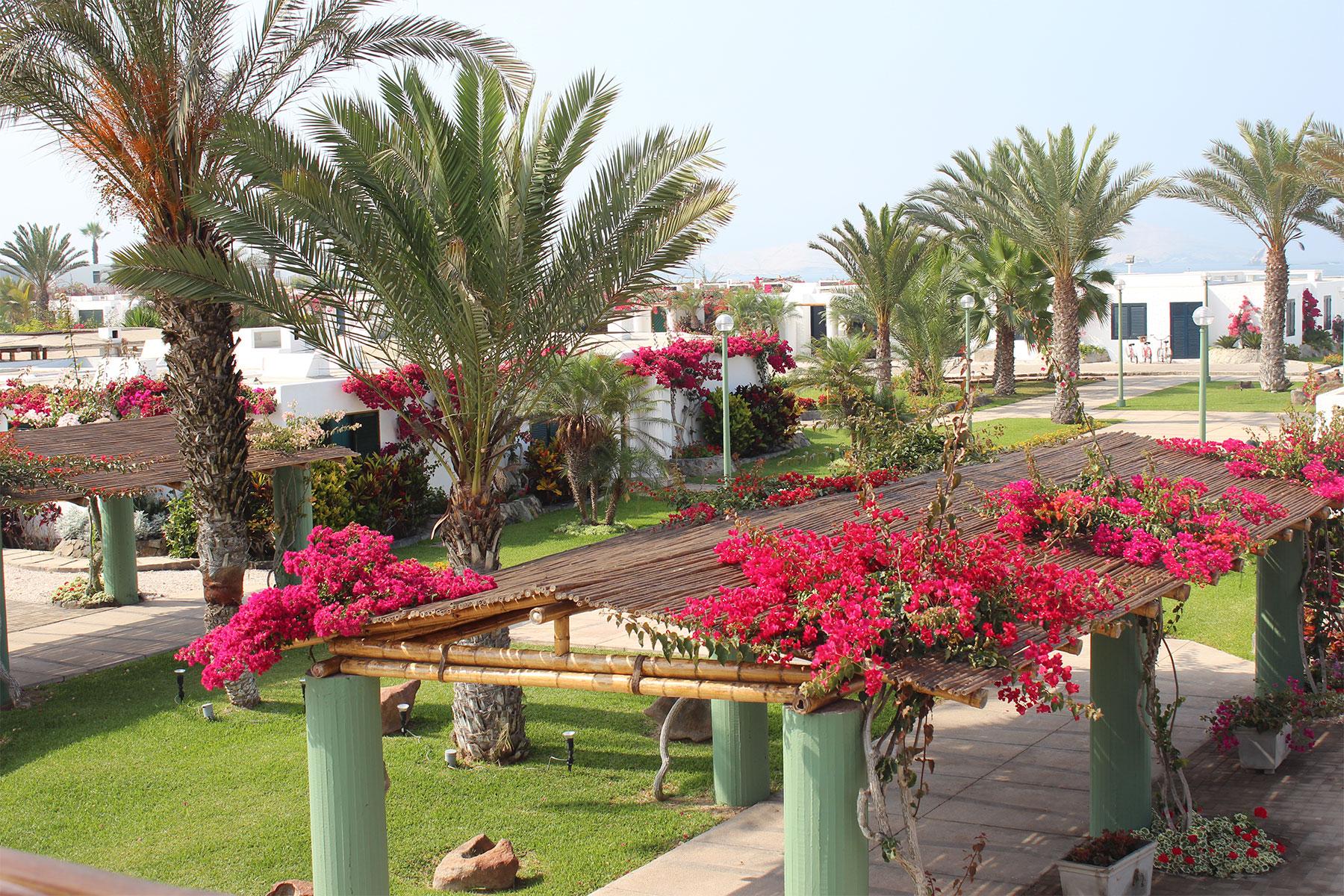 Multi-Family Home for Sale at Splendid Beach House in Private Condominium in Asia Playa Flamencos, Asia Lima, Lima, 59 Peru