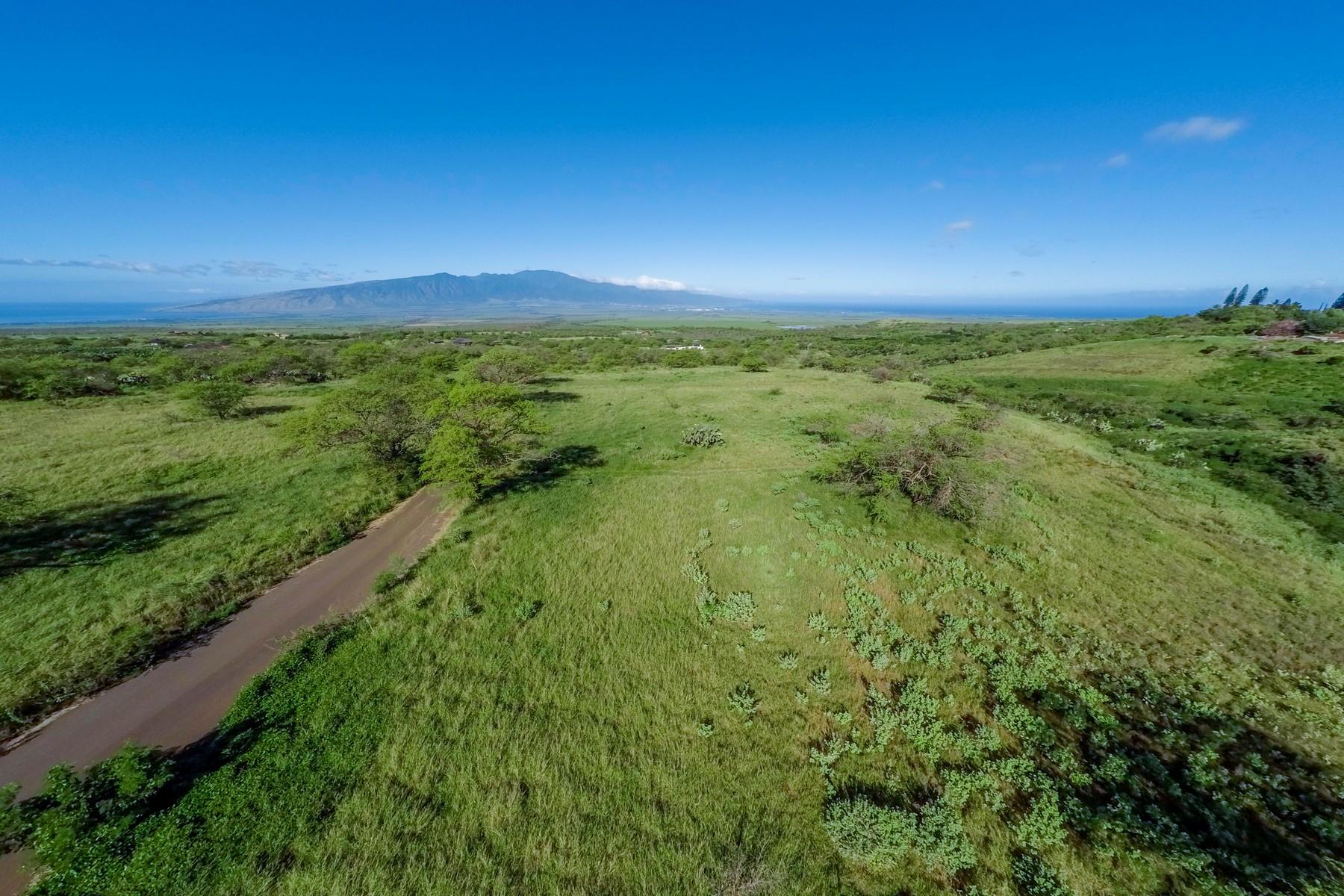 sales property at Build Your Dream Maui HOme - 5.32 Acres - Omaopio Ridge