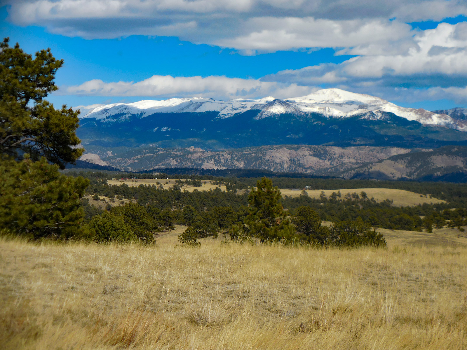 Farm / Ranch / Plantation for Active at The Mountain Ranch You Have Been Looking For 10589 Park County Road 102 Guffey, Colorado 80820 United States