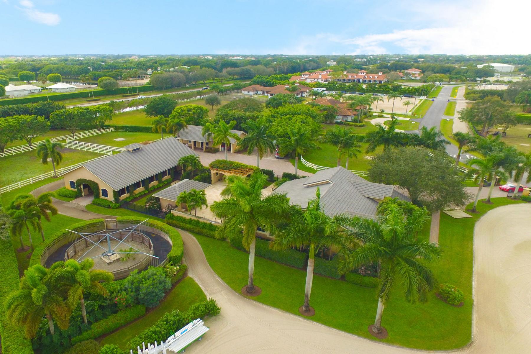 Maison unifamiliale pour l Vente à 14911 Equestrian Way Wellington, Florida, 33414 États-Unis