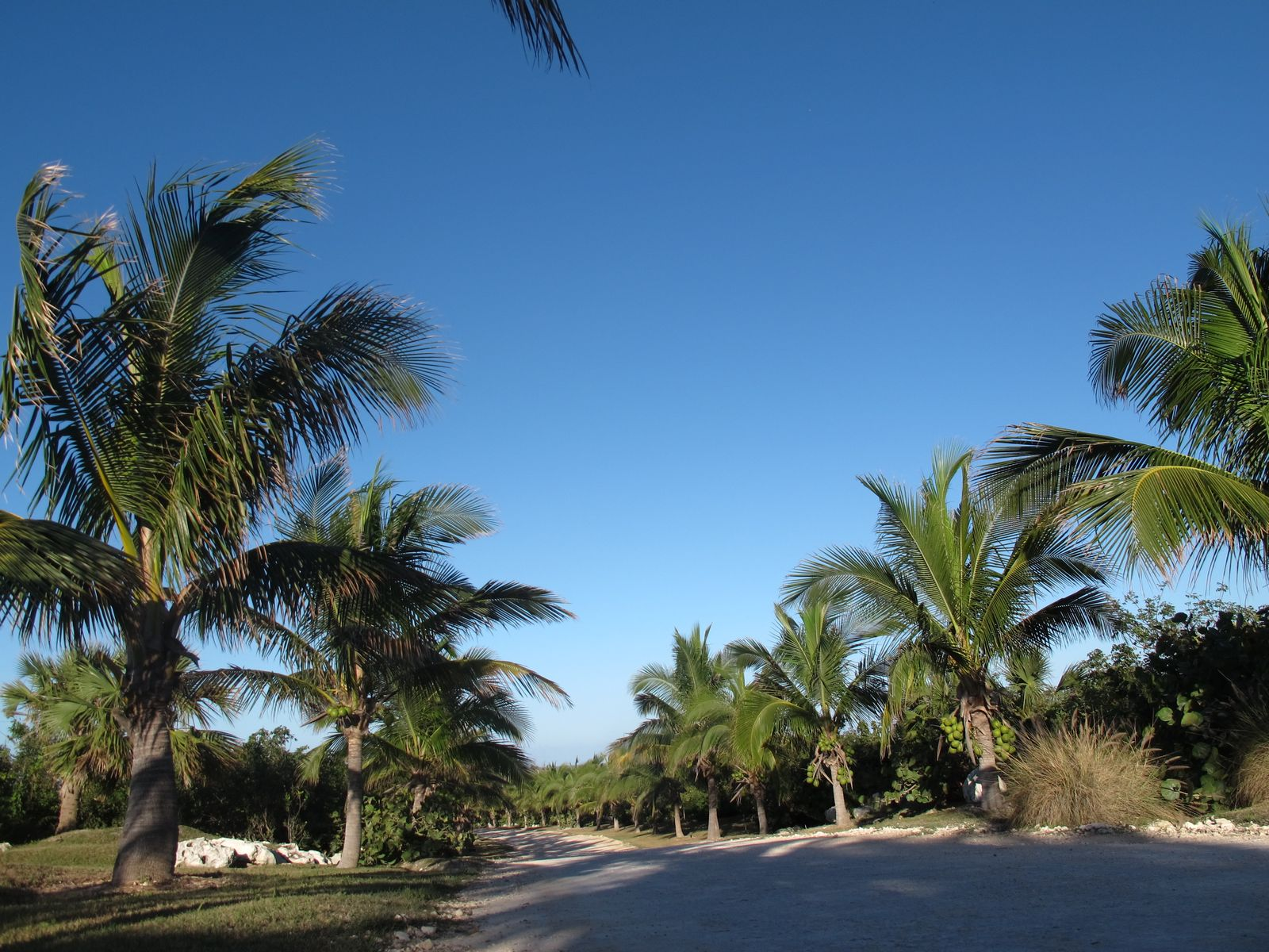 Land for Sale at South Harbour's Edge Lot - S10 Schooner Bay, Abaco, Bahamas