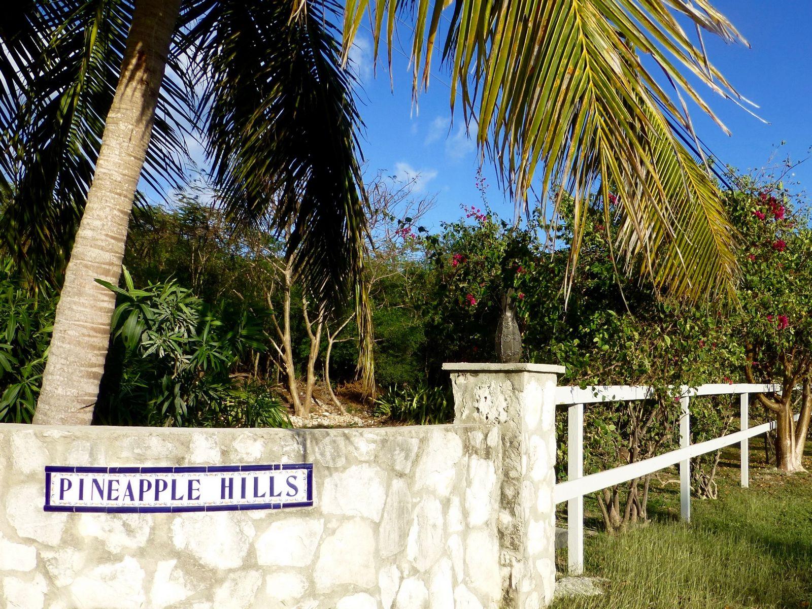 Terreno por un Venta en Lot F1 Gregory Town, Eleuthera Bahamas