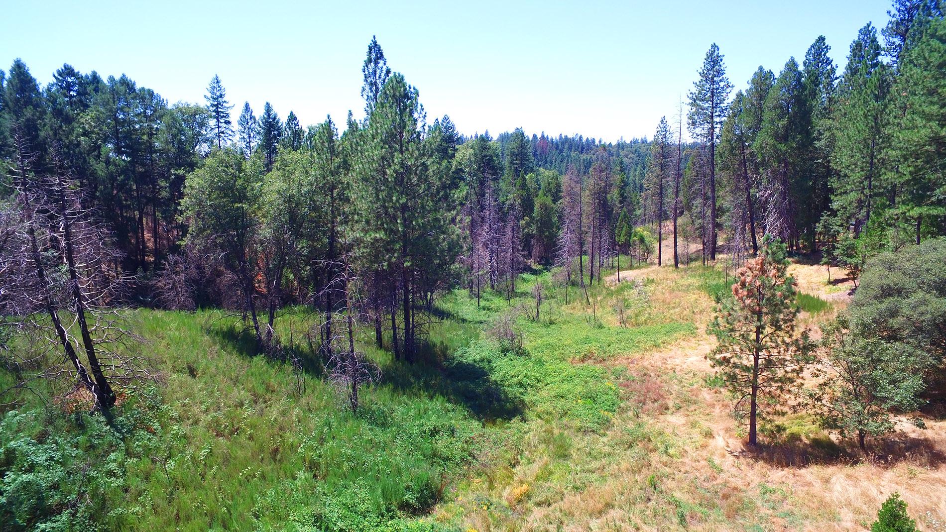 أراضي للـ Sale في 52 acres with hilltop views 6000 Lower Main Street Georgetown, California 95634 United States