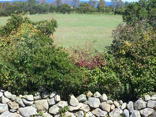 Additional photo for property listing at Anchors Aweigh 2 1630 Payne Road Block Island, Rhode Island 02807 United States
