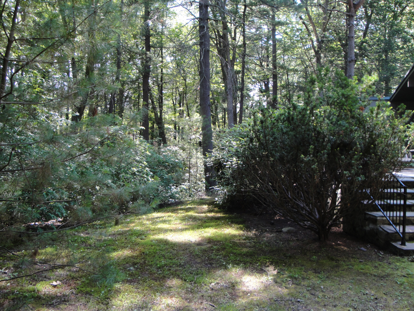 Land for Sale at 12 Dellbrook Road Weston, Massachusetts, 02493 United States