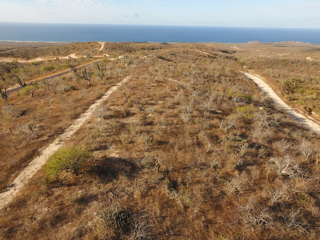 Additional photo for property listing at Rolling Hills Lot 1 Cabo San Lucas, Baja California Sur Mexico