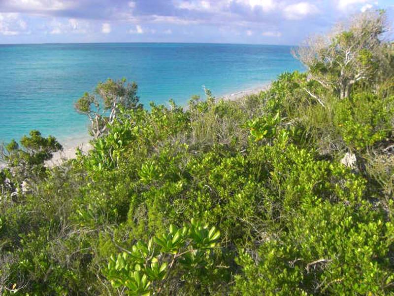 Land for Sale at Rose Island Lot 100 Rose Island, Nassau And Paradise Island Bahamas