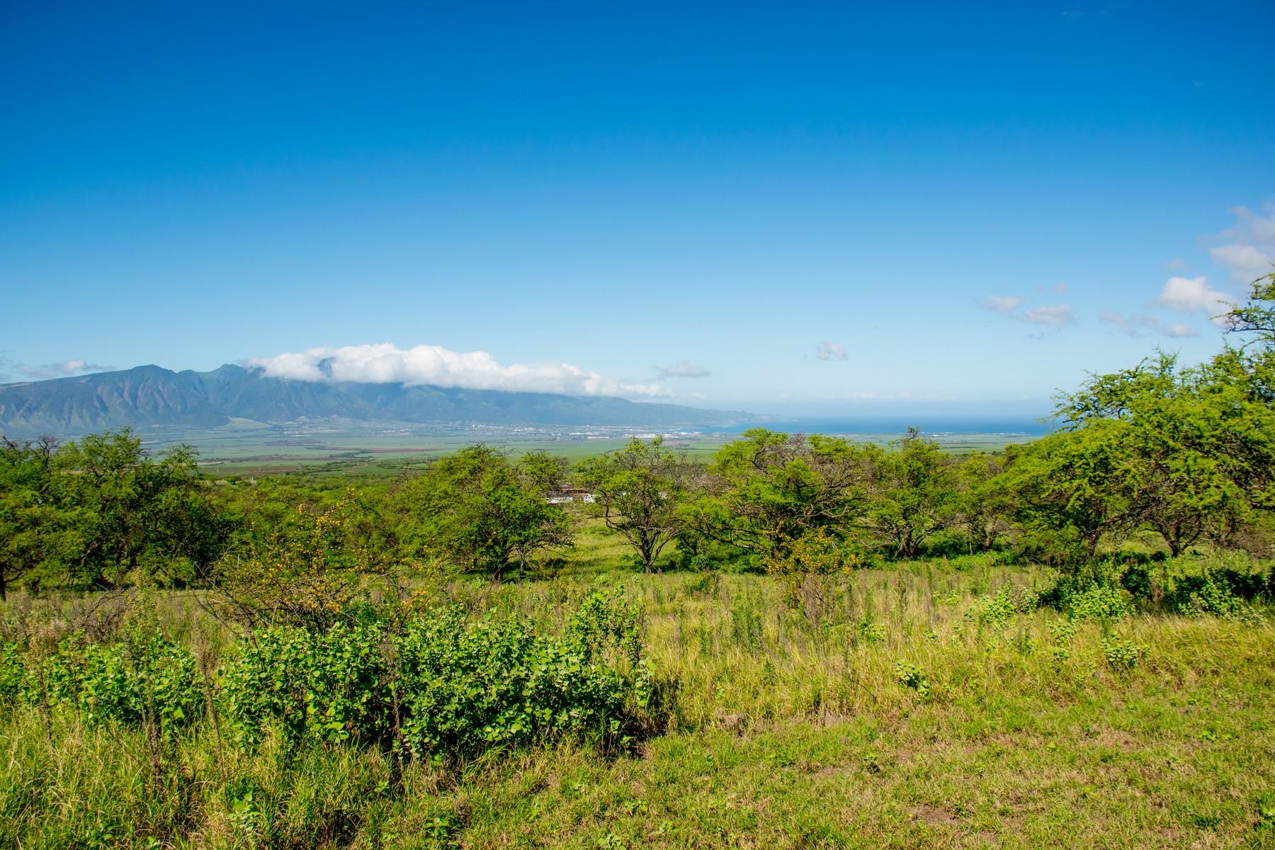 sales property at Ocean View 5.35 Acres - Omaopio Ridge
