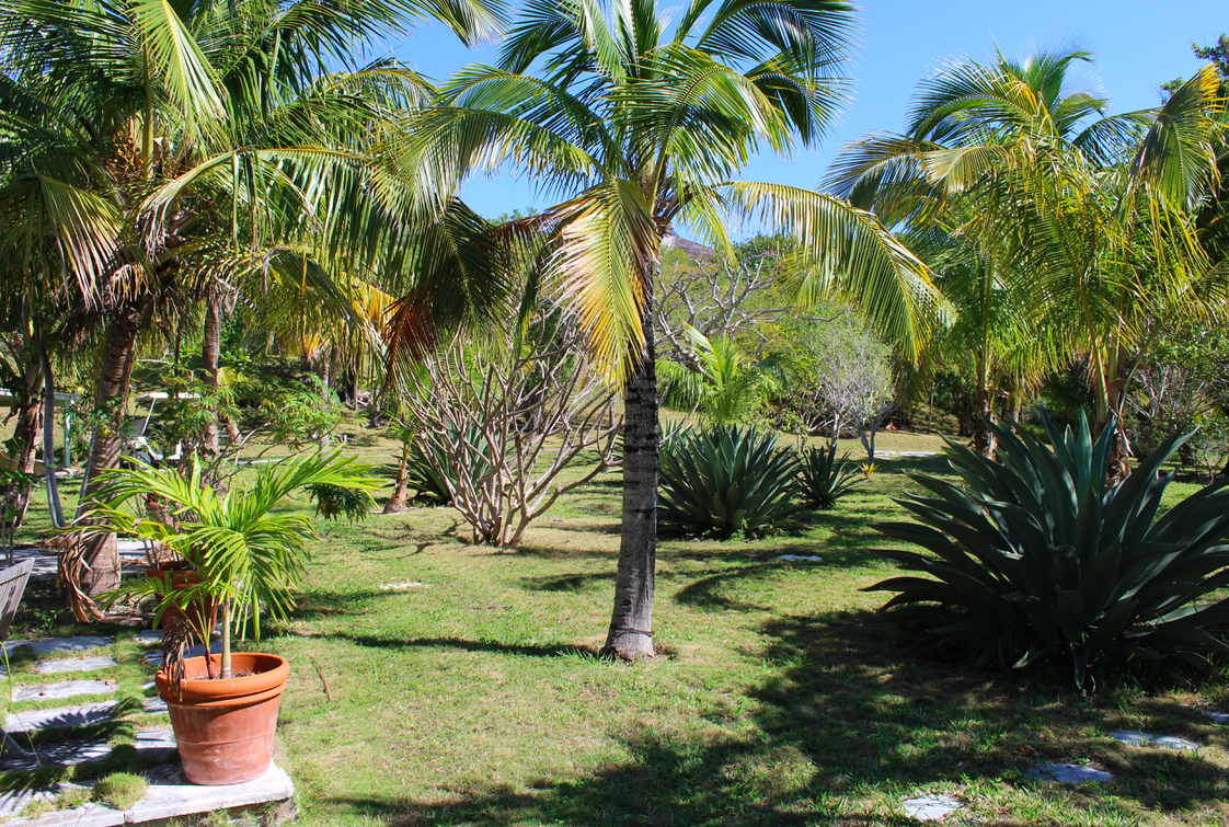 Additional photo for property listing at BEACON HILL Harbour Estate Harbour Island, Eleuthera Bahamas