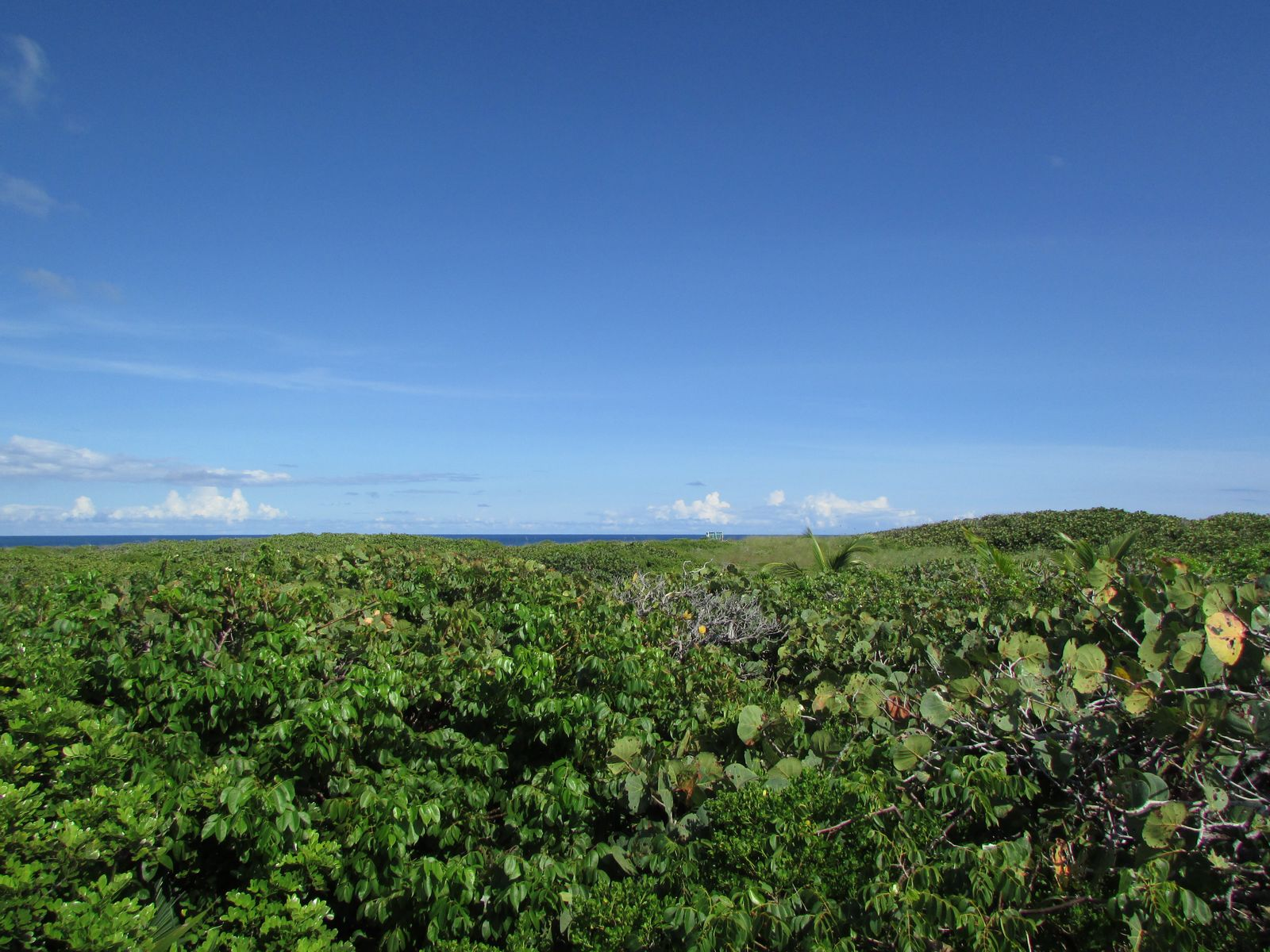 Land for Sale at Ocean View, Lot 3, Tilloo Cay Tilloo Cay, Abaco Bahamas