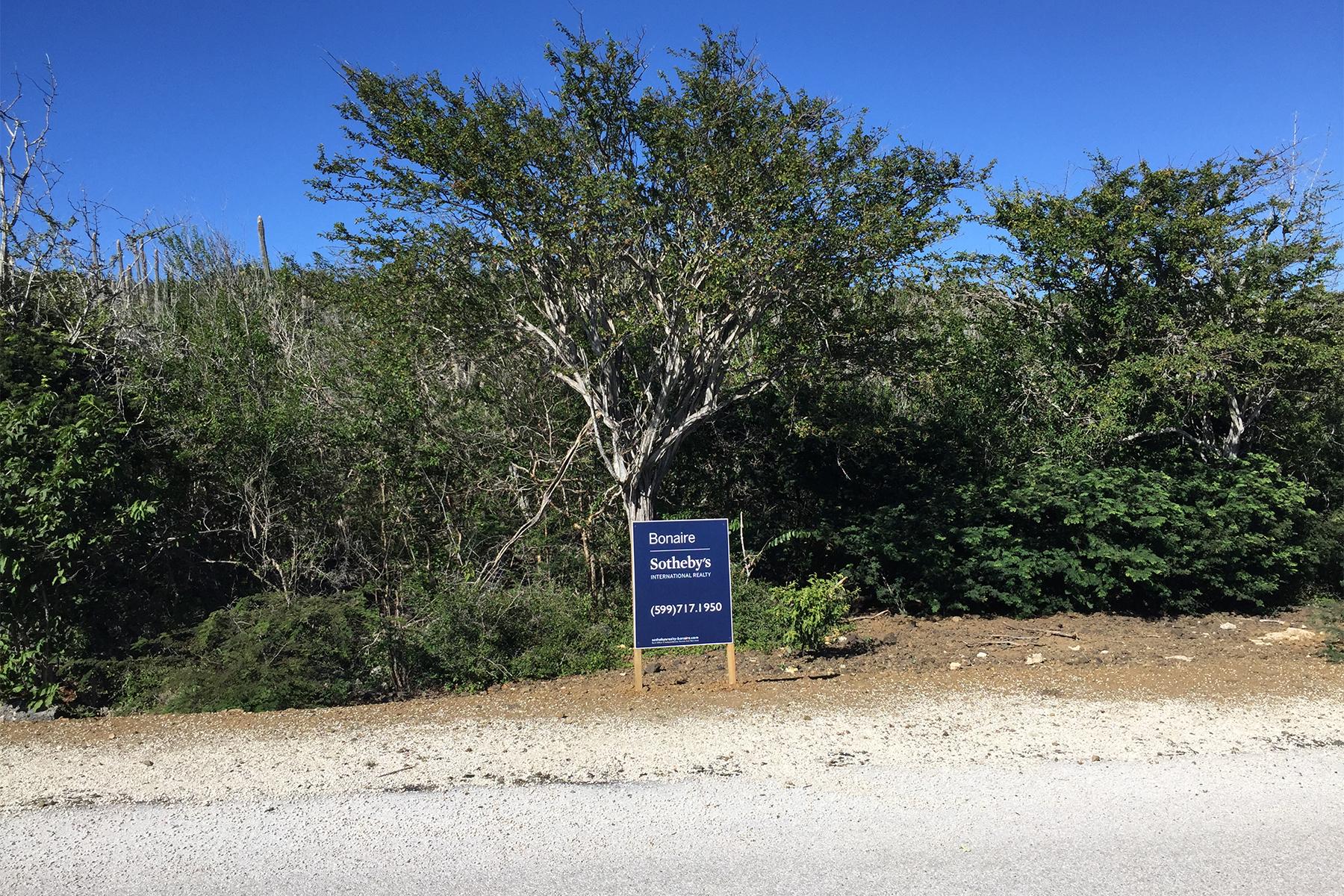 土地 为 销售 在 Crown West 229 Sabadeco, 博内尔