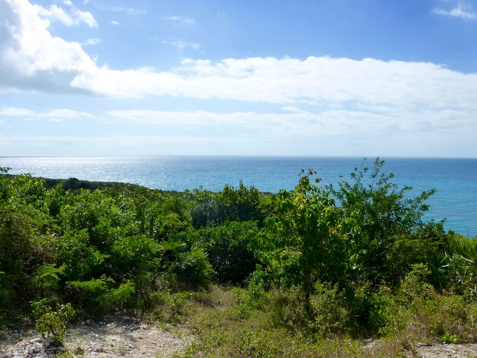 Land for Sale at Lot #4, Mutton Fish Gregory Town, Eleuthera Bahamas