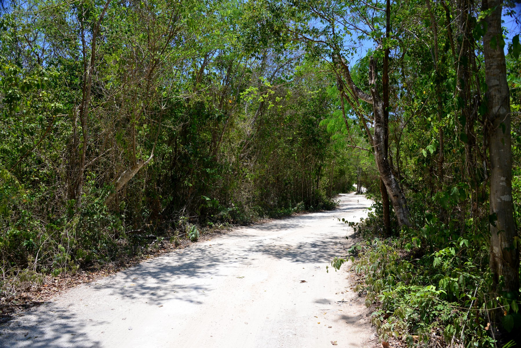 Property For Sale Tulum