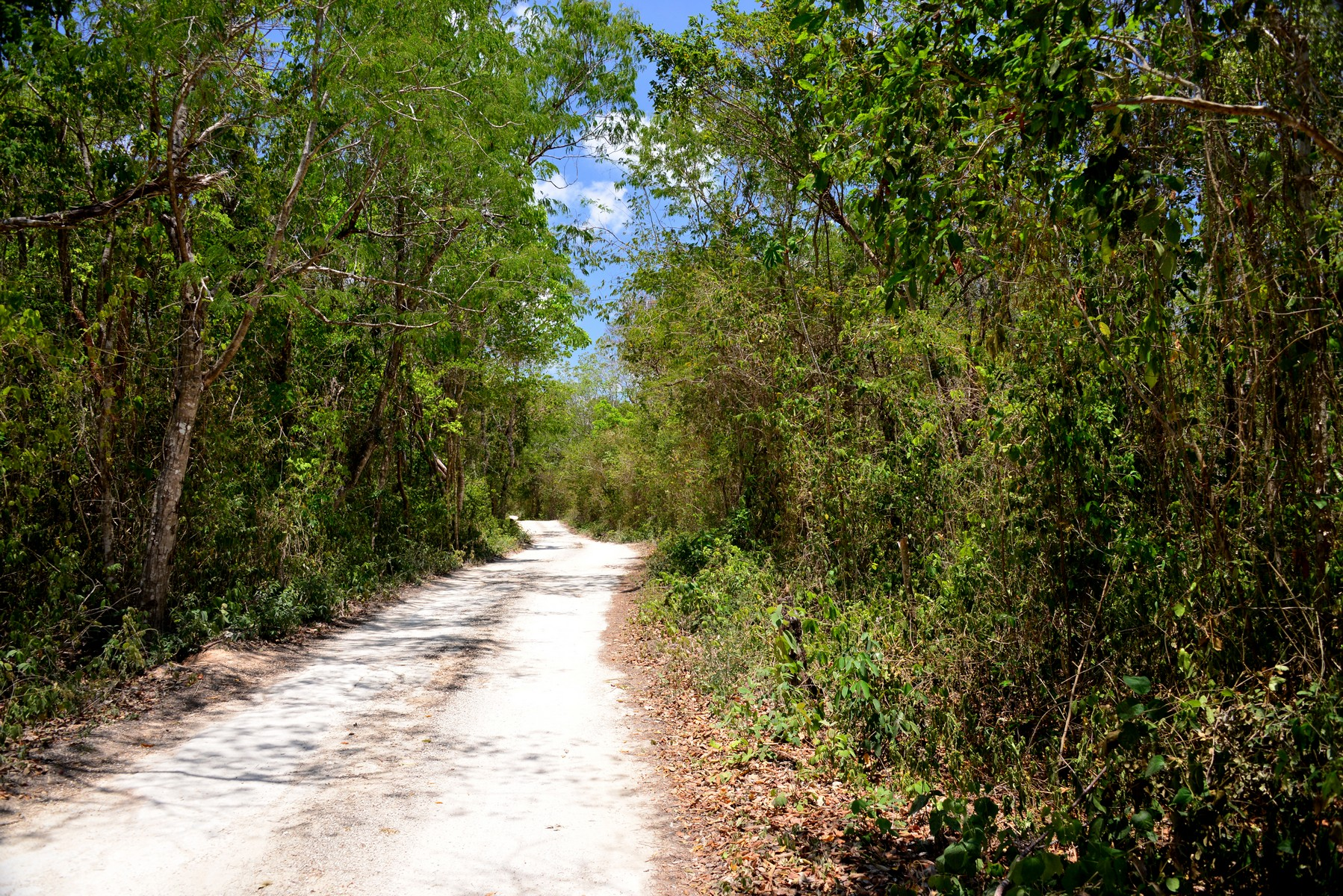 Additional photo for property listing at LOTS 6 AND 7 8TH REGION LOTS 6 AND 7 8TH REGION Manzana 668 de la zona 8 Tulum, Quintana Roo 77760 Mexico