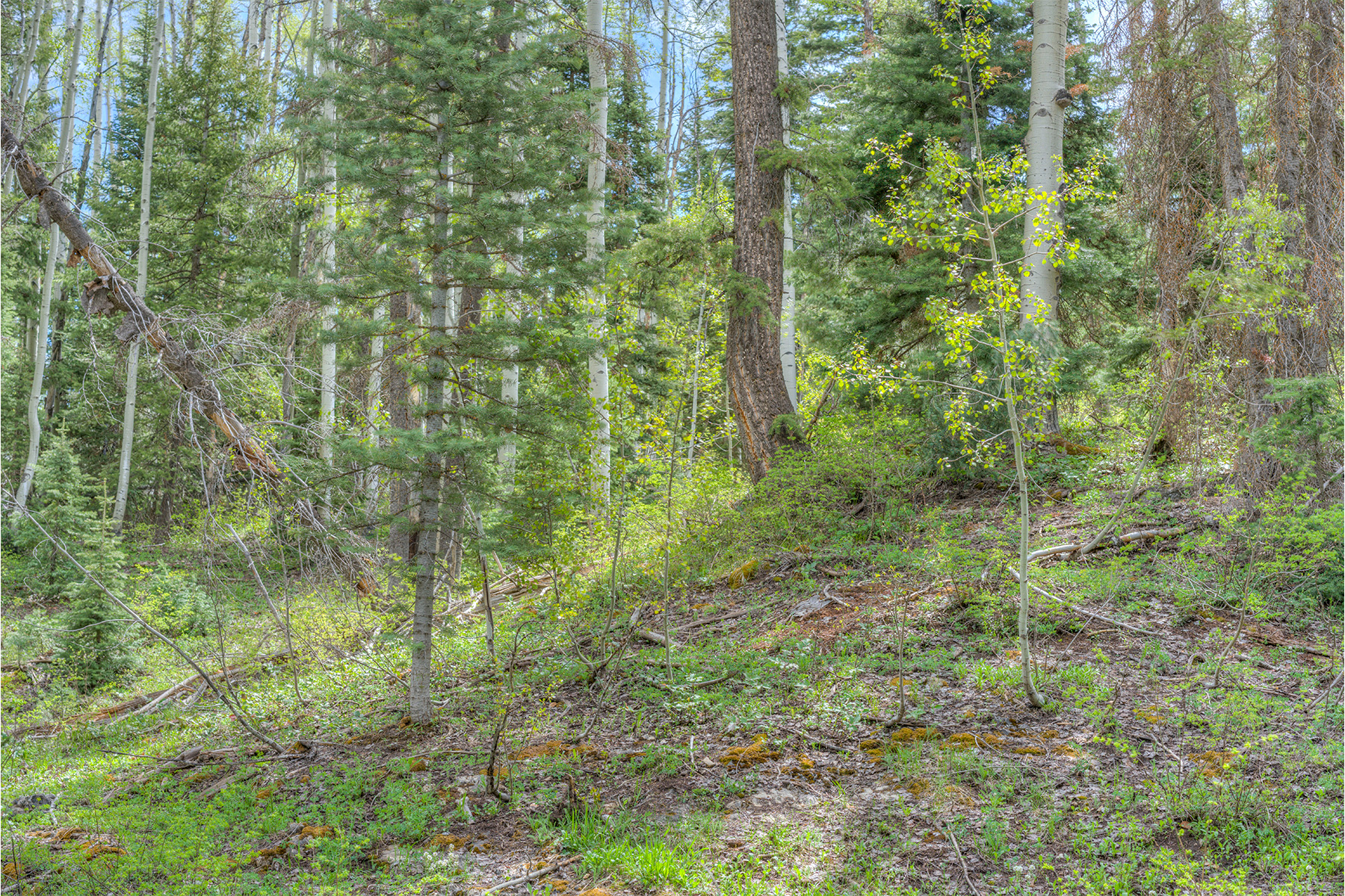 Additional photo for property listing at 152 Snowden 152 Snowden Durango, Colorado 81301 United States