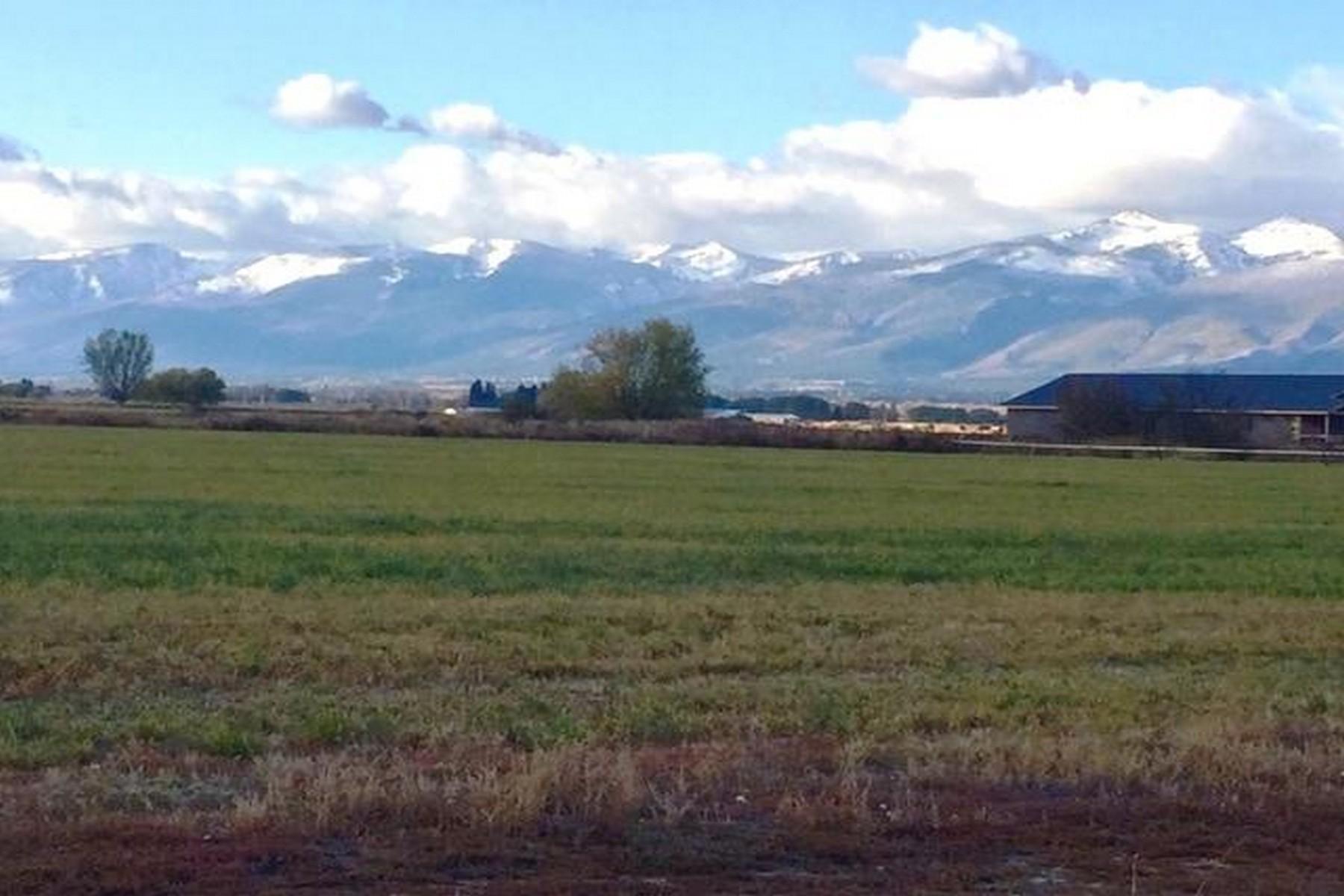 Land for Sale at 2374 Noble Court Stevensville, Montana 59870 United States