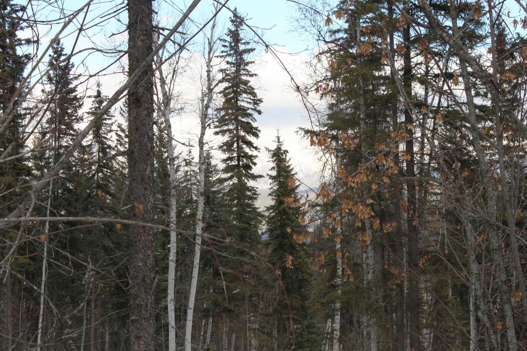 Terreno per Vendita alle ore Whitefish, Montana 59937 Stati Uniti